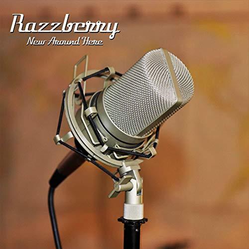 New Around Here Chatsworth Audio