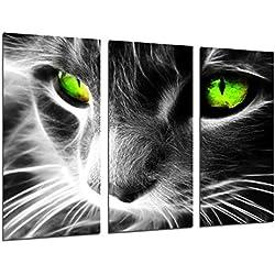 Poster Fotográfico Gato Ojos de Colores, Animales Tamaño total: 97 x 62 cm XXL