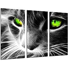 Cuadro Fotográfico Gato Ojos de Colores, Animales Tamaño total: 97 ...