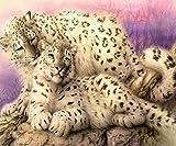 dalongshan Pittura con Diamante 5D Bambini Leopardi Ghepardi DIY Diamante Pittura Punto Croce Diamante Ricamo Mosaico Decorazione della Casa Camera Fatta A Mano 40X50Cm