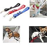 Tierbedarf für Katze und Hund, Einstellbare Sicherheitsgurt Nylon Haustiere Welpen Sitz Führleine Hundegeschirr Fahrzeug Sicherheitsgurt (Color : Red)