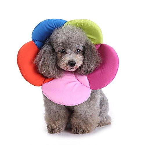 KINGDUO Hund Nackenschutz Kragen Anti Bite Schönheit Verstellbar Schutzabdeckung Ring Pet Flower Halskragen-S