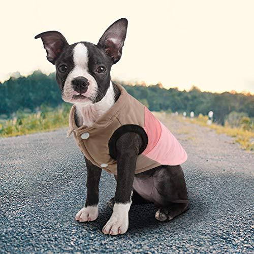 Idepet Haustier Hund Katze Mantel mit Leine Anker Farbe Patchwork gepolsterte Welpen Weste Teddy Jacke Chihuahua Kostüme Mops Kleidung (XL, Rosa) (Teddy Kostüm Hunde)