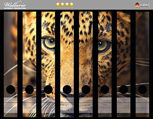 Wallario Ordnerrücken Sticker Leopard in Nahaufnahme bein Laufen in Premiumqualität - Größe 8 x 3,5 x 30 cm, passend für 8 schmale Ordnerrücken (Bein Leopard)