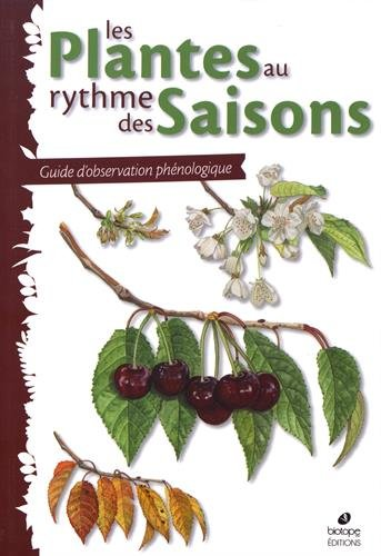 Les plantes au rythme des saisons