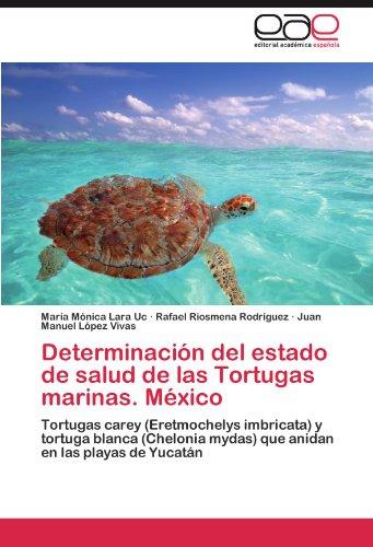 determinacion-del-estado-de-salud-de-las-tortugas-marinas-mexico