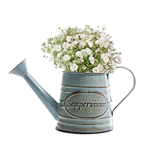 Somedays Vintage Metall Eisen Blumengarten Shabby Vase Topf Sukkulenten Eimer Pflanzer Dekor Blumenschmuck Blumentopf