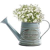 iShine Blumentopf Vintage Blumenvase aus Metall Pflanzen Vase mit Griff Schmiedeeisen Wasserkrug Shabby Chic Vase Ländlicher Stil Vintage Eisenvase Deko für Garten