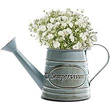 Bloomma Regaderas, Vintage Metal Hierro Jardín de flores Shabby Florero Maceta Plantas suculentas Cubo Jardinera