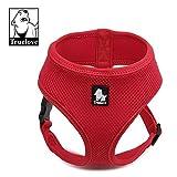 Treat Me Hundegeschirr Gepolstert Premium Verstellbar Sicher Kontrolle Einfach Hunde