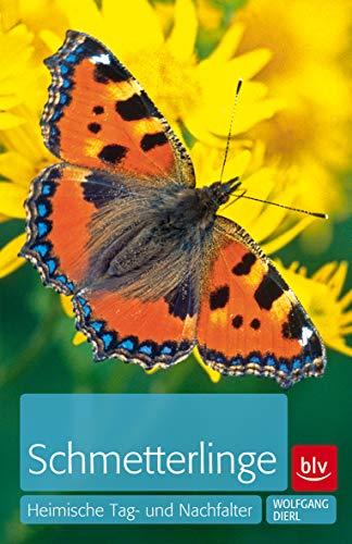 Schmetterlinge: Heimische Tag- und Nachtfalter