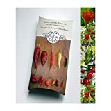 Saatgut Set: 'Die 5 schärfsten Chilisorten der Welt', als Samen zur Anzucht in schöner Geschenkverpackung