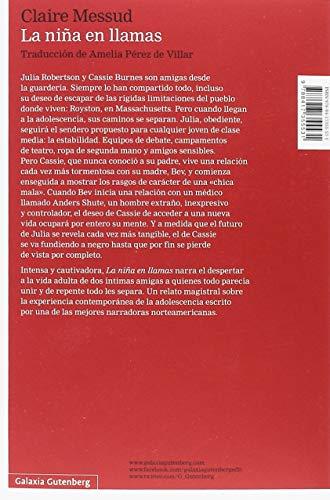 Resumen del libro de Claire Messud LA NIÑA EN LLAMAS