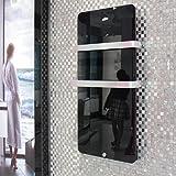 Infrarotheizung 600 Watt Glas Infrarot Heizung Design Elektrischer Heizkörper doppelte Glaswand montierte Schwarz (ohne Thermostat)