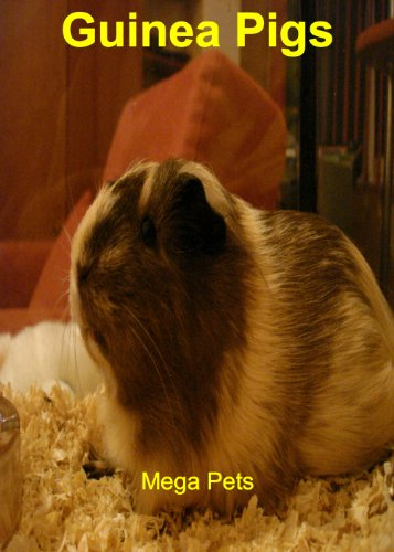 Guinea Pigs as Pets - An Interactive Games Quiz Book (English Edition)