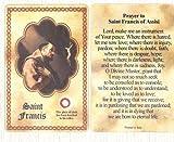 ST. FRANCIS Relic Card by Lumen Mundi