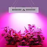LED Pflanzenlampe Grow Lampe 1800W Vollspektrum Gewächshaus Pflanzenlicht Zimmerpflanzen für Blume Gemüsse Schwarz Schale 330x330x72mm