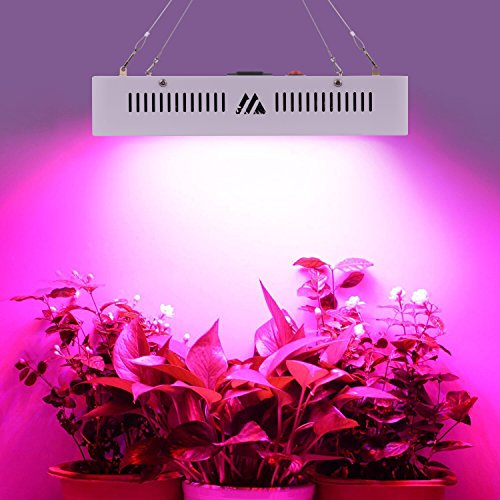 LED Pflanzenlampe Grow Lampe 1000W Vollspektrum Gewächshaus Pflanzenlicht Zimmerpflanzen für Blume Gemüsse Weiß Schale 31x21x7.2cm (Led-pflanze-lampe)
