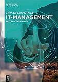 IT-Management: Best Practices für CIOs -