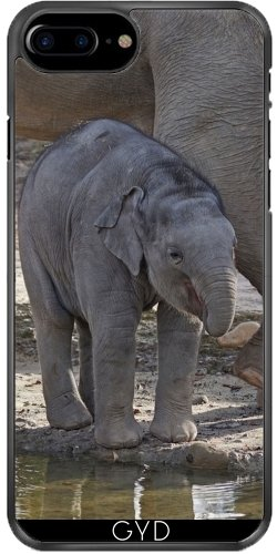 Leder Flip Case Tasche Hülle für Apple Iphone 7 / Iphone 8 - Elefantenbaby by More colors in life Plastique Rigide