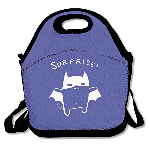 Druck Lunch Box Surprise Lunch Bag