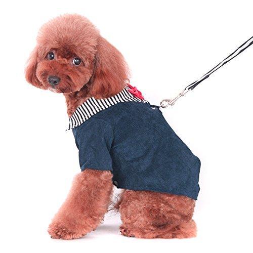 Alfie Pet by Petoga Couture Fellpflege-Asher Tuxedo Geschirr mit Leine Set, Large, Navy -