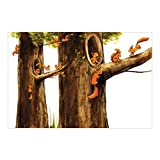 Vliestapete–Home of Einhörnchen–Wandbild breit