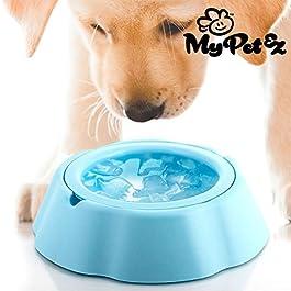 My Pet Frosty Bowl – Abbeveratoio per Animali Domestici