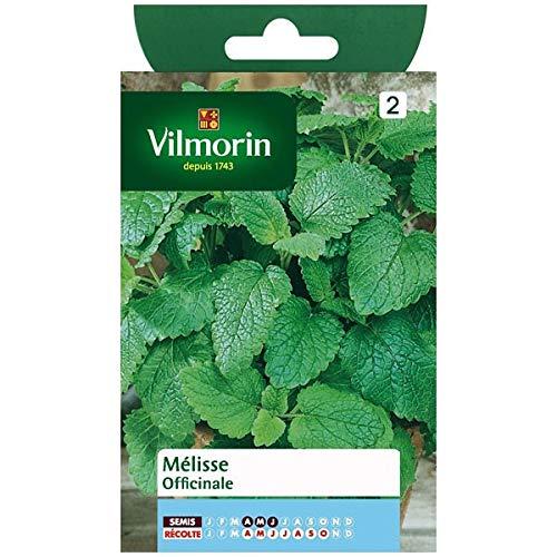 Vilmorin - Sachet graines Melisse officinale