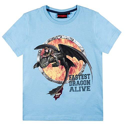 Camiseta Cómo Entrenar a tu Dragón