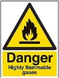 vsafety Schilder 69009bc-r Gefahr Leicht Brennbare Gase Achtung Fire und Entzündlich-Zeichen, 1mm starrer Kunststoff, Portrait, 300mm x 400mm, schwarz/gelb