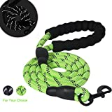 RCRuning-EU Hunde Leine, Dog Leash, Hundeleine kleine Hund, with Soft Handle and Reflective Threads, Durable Comfortable Dogs Lead Leash for Dogs Training Leads (1.5m, Grün)