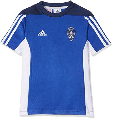 adidas Mt 14 Tee Y Camiseta Real Zaragoza Fc, Niños, Azul (Azufue), 1