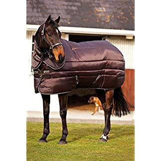Amigo Insulator Heavyweight Plus Combo 550g Horse Stable Rug – Brown/Brown and Cream 51EYsbw9hPL