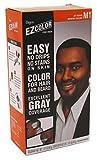 #4: Bigen EZ Color Hair Color for Men - Jet Black Kit