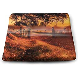 keiwiornb Comfortable Seat Cushion Chair Pad Sunset Farm and Crow Perfect Memory Foam Cushions Lighten The Bumps