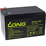 Powery KungLong Batería de Reemplazo para Sillas de Ruedas Scooter Eléctrico...