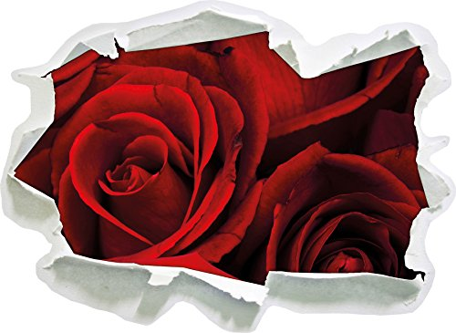 rose rosse, carta 3D della parete di