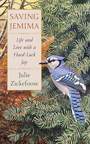 Saving Jemima: Life and Love with a Hard-Luck Jay (English Edition)