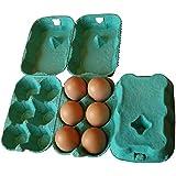 Eton Egg Boxes, 24 x 1/2 dozen, Shrink Wrapped (Green)
