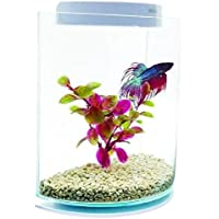 Marina Kit de acuario Betta/Siamese Fighting Fish Forma de media luna 3 litros