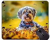 Naturkautschuk-Mauspad Gedruckt mit Pet lässt Hund Herbst - genähte Kanten