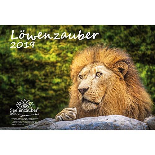 León mágica · DIN A4· Premium Calendario 2019· León · León · África · Animales · Wildnis · Natural · Set de regalo con 1tarjeta de felicitación y 1Tarjeta de Navidad (· Edition Alma mágica