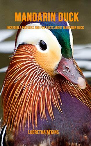 Descargar gratis Mandarin Duck: Incredible Pictures and Fun Facts about Mandarin Duck PDF