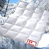 Revital warme Winter Daunendecke 135x200 cm
