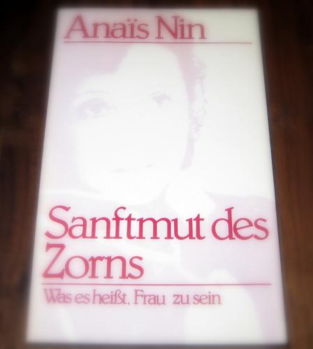 Sanftmut des Zorns. Vorträge, Seminare und Interviews Broschiert – März 1985 Evelyn J. Hinz Anais Nin Scherz Mchn.