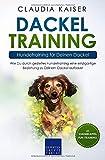 Dackel Training - Hundetraining für Deinen Dackel: Wie Du durch gezieltes Hundetraining eine einzigartige Beziehung zu Deinem Dackel aufbaust (Dackel Band, Band 2) - Claudia Kaiser