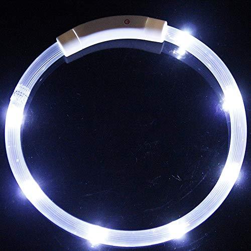 DuYanDY Collare per Cani LED Collare per Animali Domestici in Poliestere a Emissione di Luce con Ricarica USB Creative Dog Night Light Circle,1,M