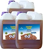 Leinöl 15 Liter (3 X 5 Liter) Lausitzer kaltgepresst ohne Konservierungsstoffe kostenlose Lieferung