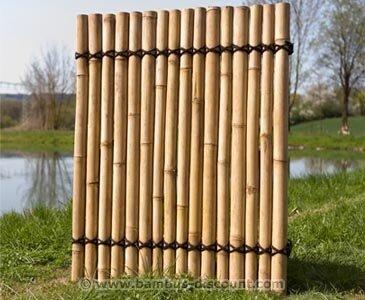 Bambus Sichtschutzzaun Apas4 Gelblich 150 X 120cm Bamboosphere